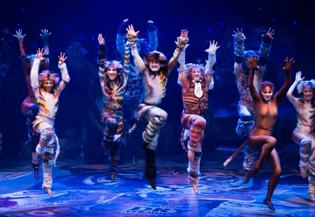 Cats at Tennessee Performing Arts Center